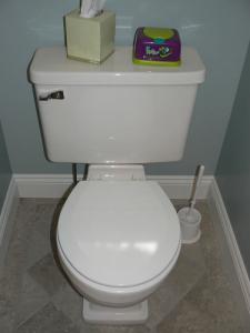 postorivo-contractors-bath-img-maple-glenn-powder-room-03